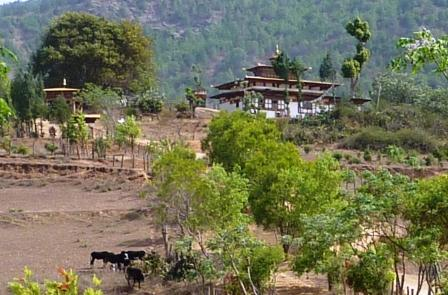 13 kloster chimi lhakhang